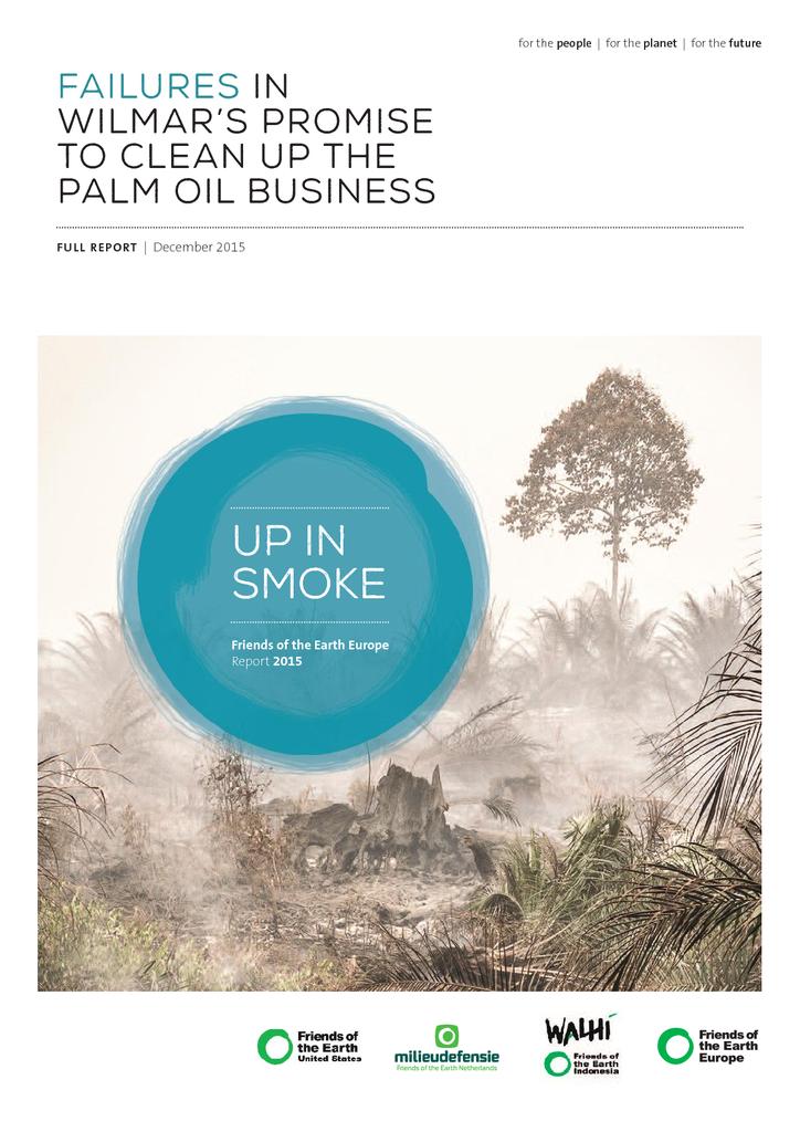 Voorbeeld van de eerste pagina van publicatie 'Up in smoke. Failures in promise Wilmar to clean up the palm oil business'