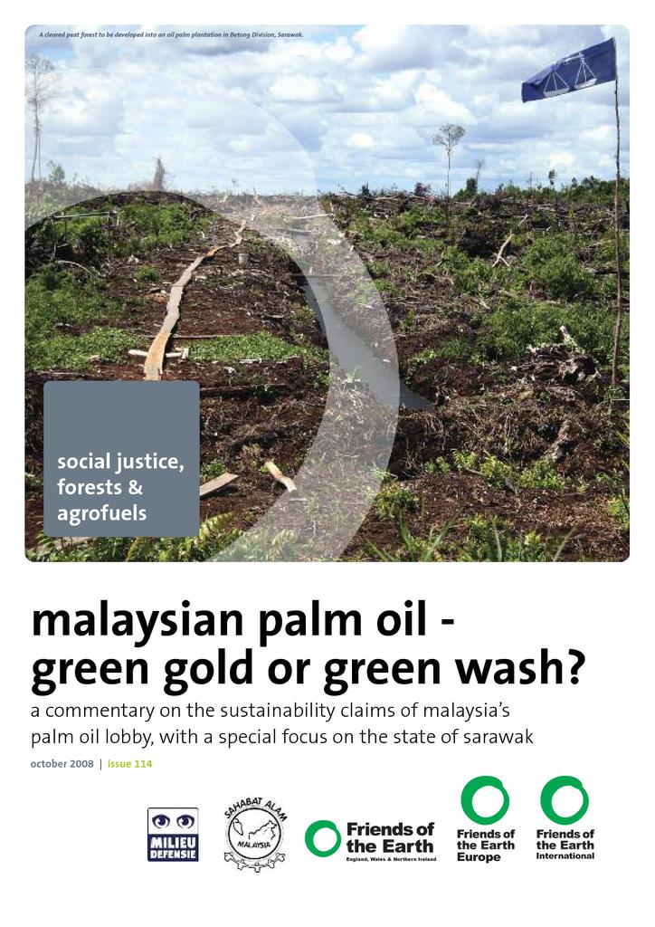 Voorbeeld van de eerste pagina van publicatie 'Malaysian palm oil - green gold or green wash?'