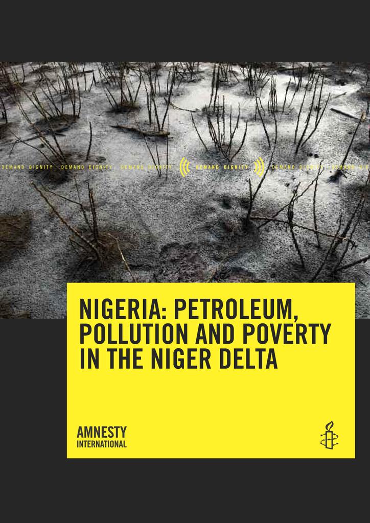 Voorbeeld van de eerste pagina van publicatie 'Nigeria: Petroleum, Pollution and Poverty in the Niger Delta'