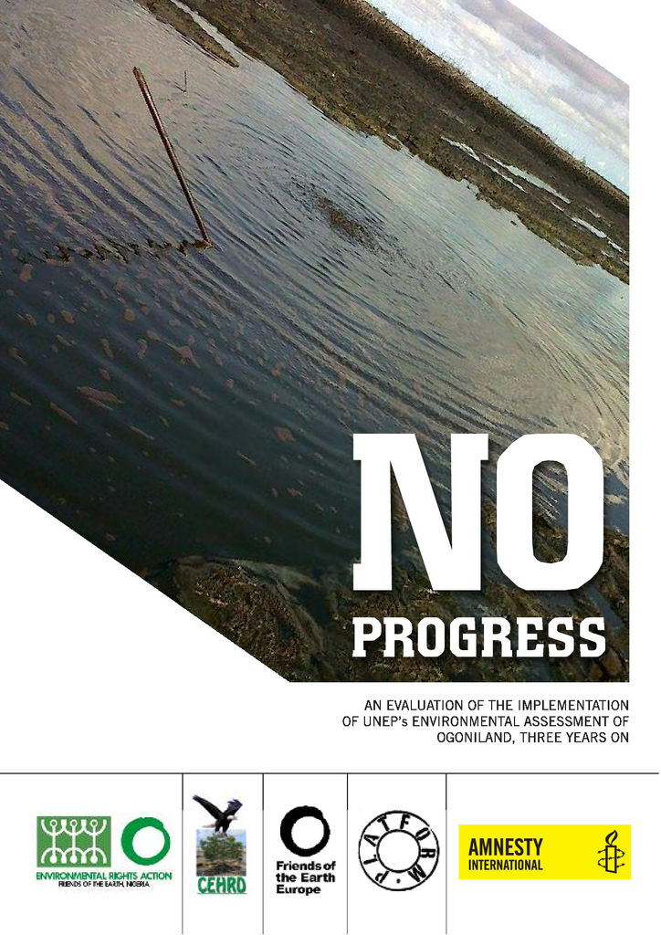 Voorbeeld van de eerste pagina van publicatie 'No Progress. Report on what has been done to clean Ogoniland from oil pollutions 3 years after UNEP's report'